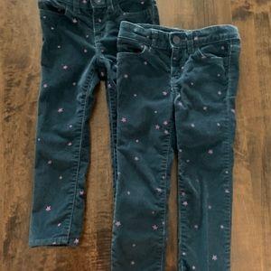 Gap darling corduroy pants